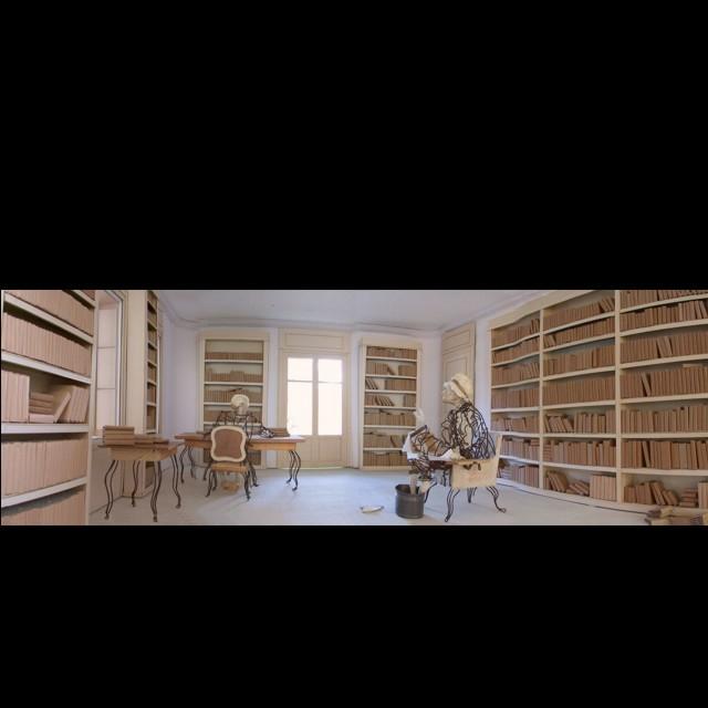 Jean-Yves Verne - bibliothèque de Voltaire, maquette